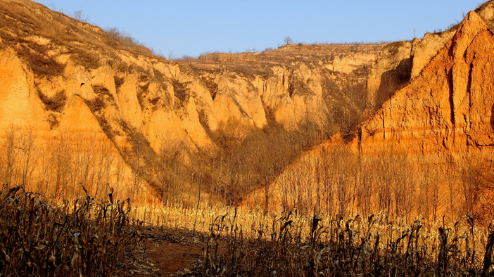 洛川县黑木沟黄土地质遗迹是地质历史时期内力和外力地质作用的综合产物,是240万年以来地球地壳结构、构造运动和地貌形态 演变的真实写照。各时期黄土地层出露齐全,层位稳定,真实记录了第四纪以来古气候、古环境、古地理、古植被以及重要地质事件等多方面信息,可作为一条标准黄土地层剖面与黄土高原上的黄土地层进行对比。